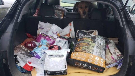 Animal-Food-Bank-looking-to-feed Kelowna-s-pets-in-need